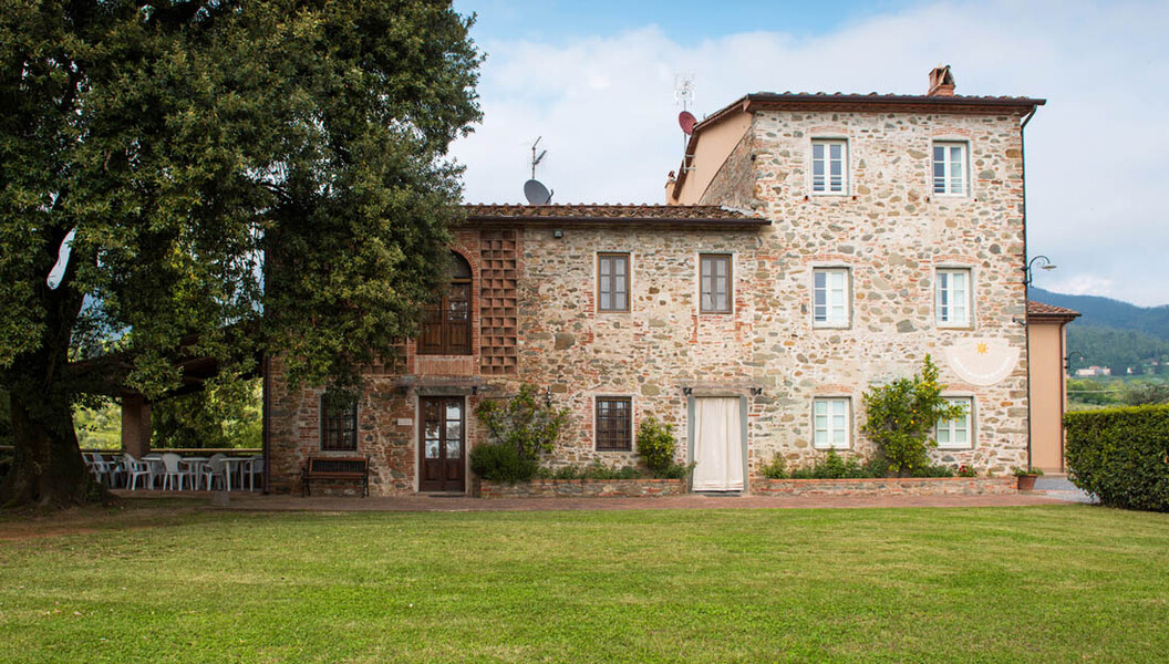 Ferienhaus Casa Tonio in der Toskana mit grossem Baum und Rasen