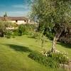 Viel Platz und schattige Plätzchen bietet Ihnen der Garten des Le Casine