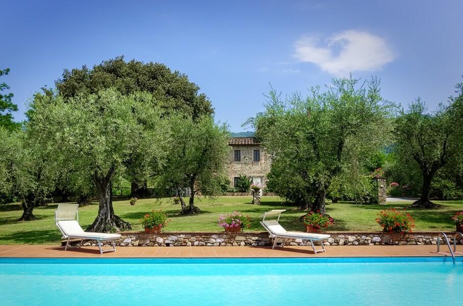 Pool mit Sonnenliegen und Olivenbäumen und Ferienhaus Casa Tonio bei Lucca