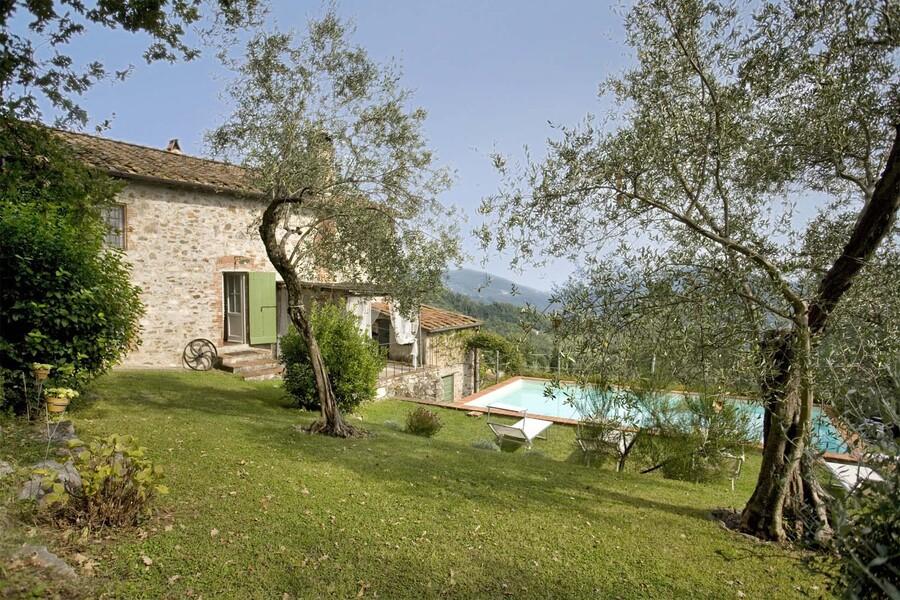 Garten mit Olivenbäumen und Pool im Ferienhaus casa fiora bei Lucca