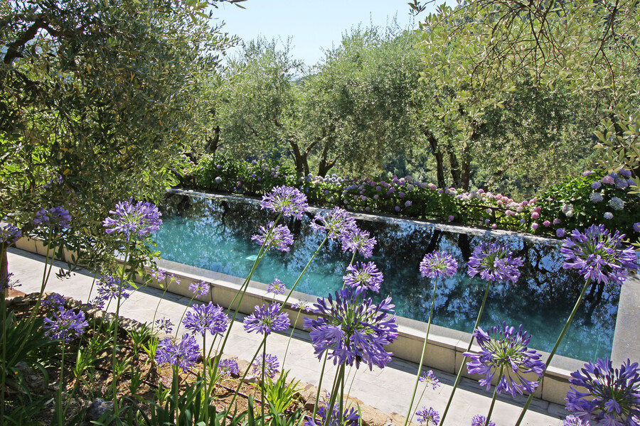 Private modern pool in the holiday home Macennere in Lucca