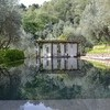 Private and modern pool in the holiday villa Macennere in Lucca